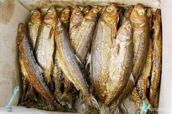 Spousta ryb online datování zdarma